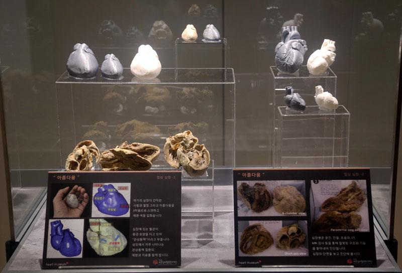 Heartmuseum-1-3_m.jpg