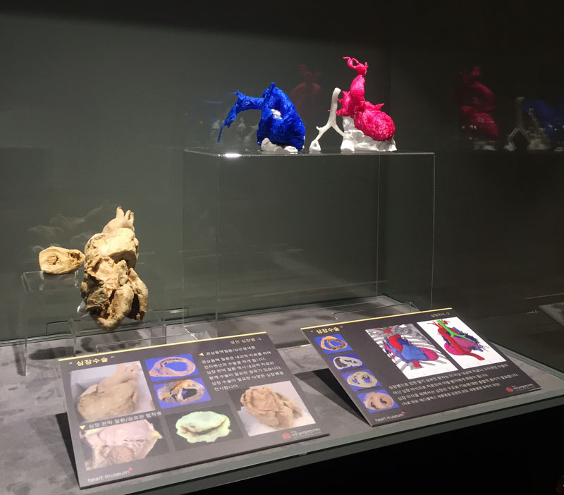 Heartmuseum-4-3_IMG_0990_m.jpg