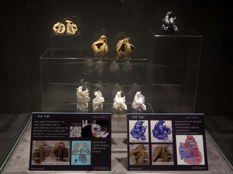 Heartmuseum-6-3_m.jpg