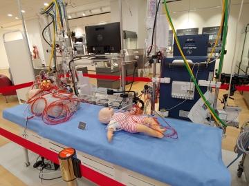 인공심폐기(cardio-pulmonary bypass)