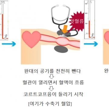 혈압계의 원리와 구성